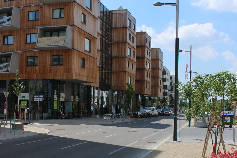 Bild Seestadt Aspern Blick in die Straße mit Gebäude bestehend aus einer zweigeschossigen Erdgeschosßzone und darüber Wohnbau aus Holz