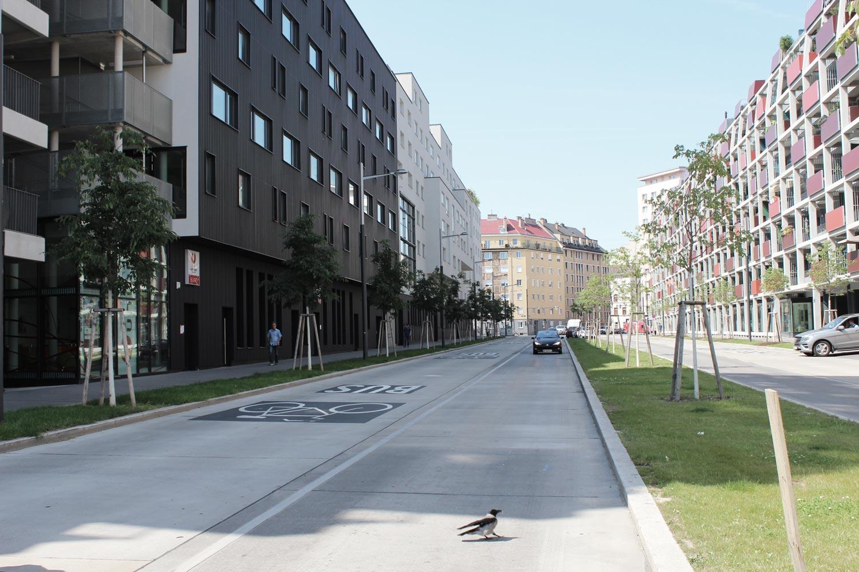 Foto Wien Sonnwendviertel Blick entlang einer Straße mit Allee